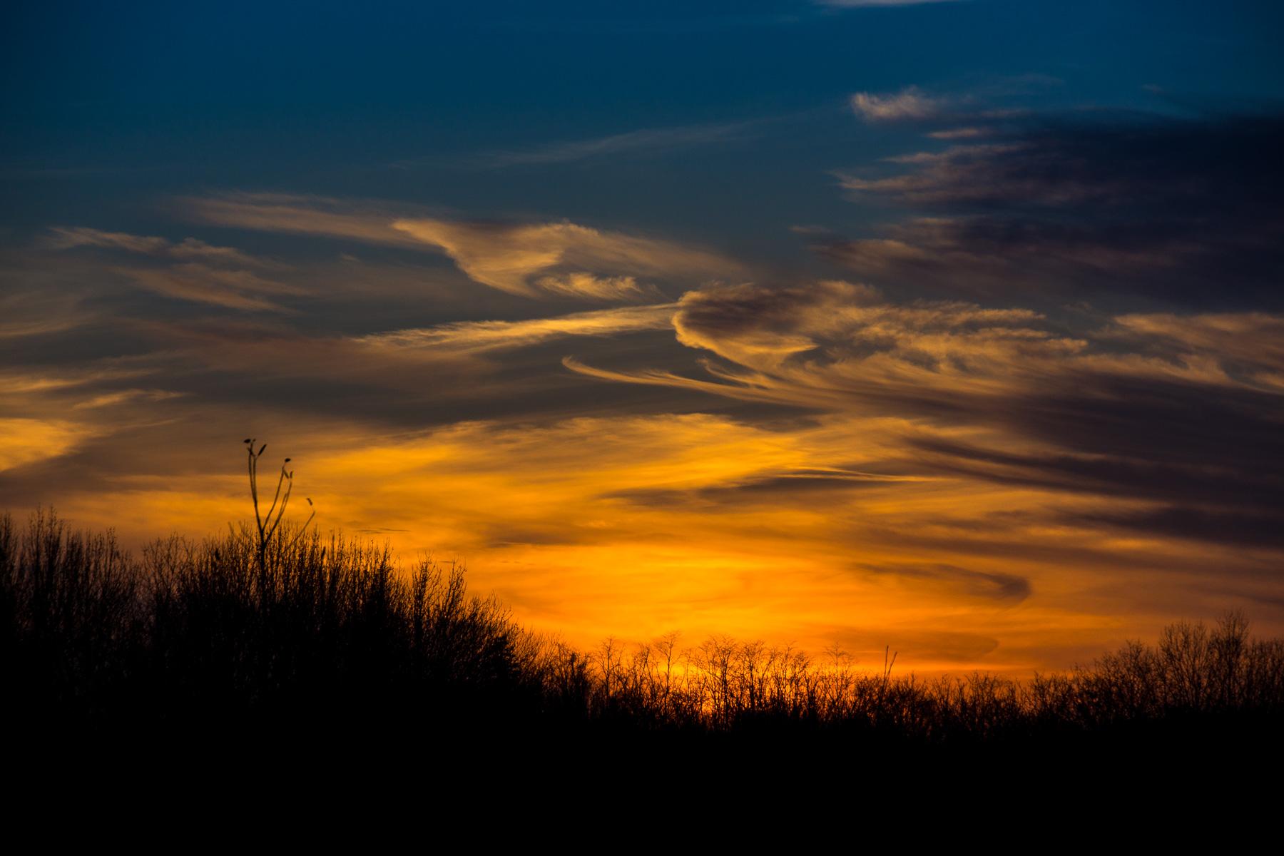 Sunset Swirls