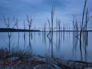Manasquan Reservoir Morning