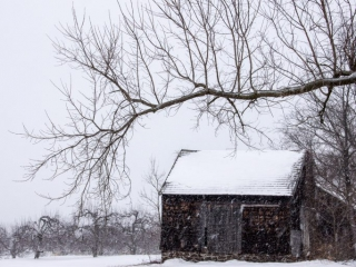Snow Shack at Monmouth Battlefield