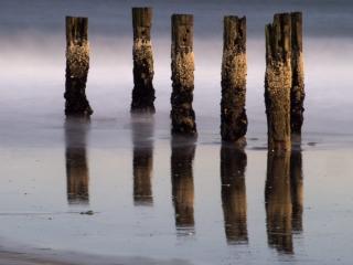 Pillars in the Atlantic II