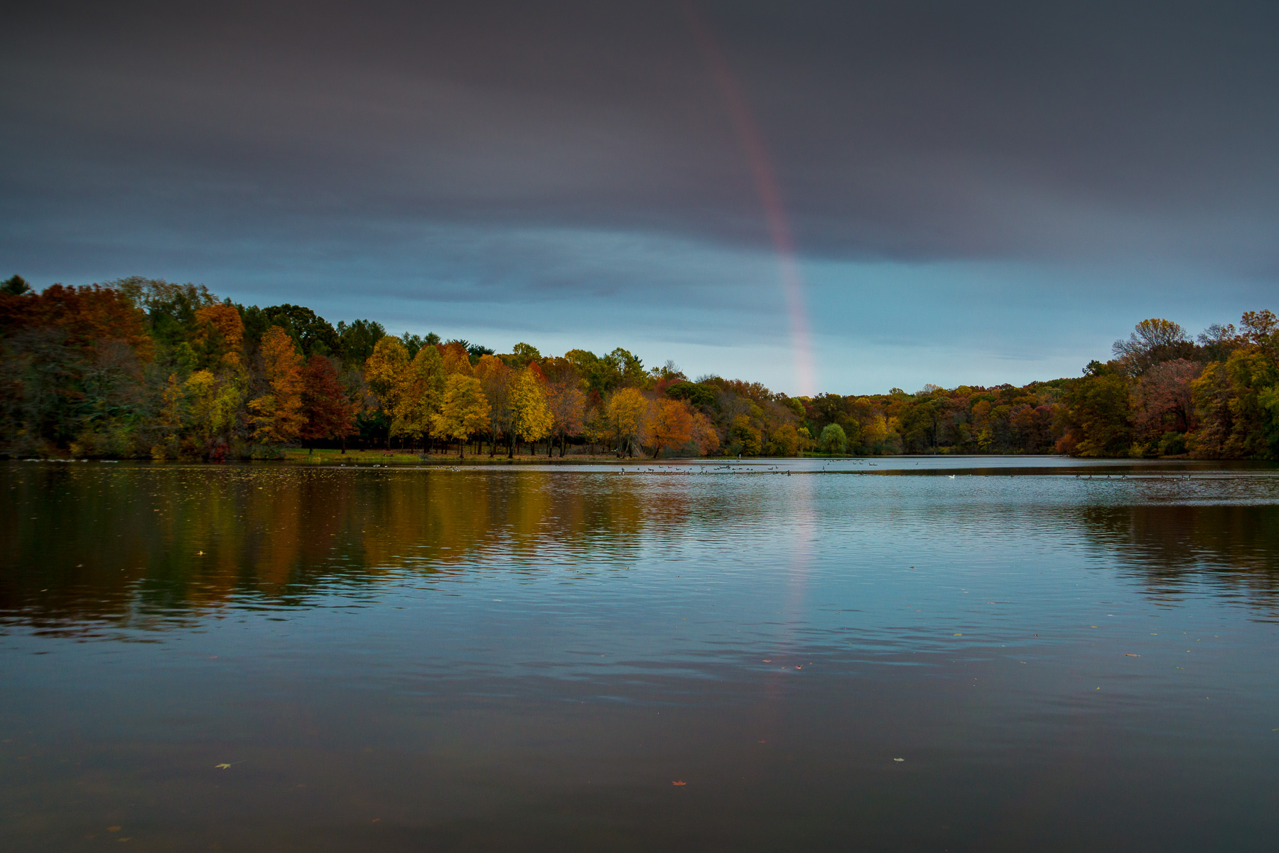 Rainbow over Lake Topanemus